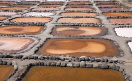大加那利岛, Salinas de Tenefe 免版税库存照片
