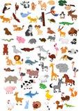 大动物动画片集合 皇族释放例证