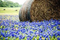大包在矢车菊领域的干草 免版税图库摄影