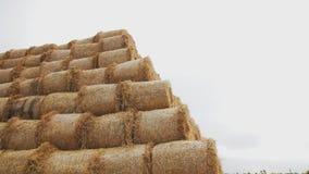 大包在领域的干草 以金字塔的形式大堆 影视素材