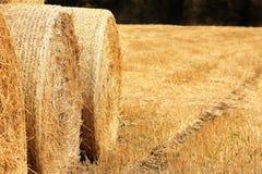 大包在领域的干草 免版税图库摄影