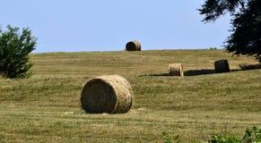 大包在领域,乔治亚,美国的干草 免版税库存照片