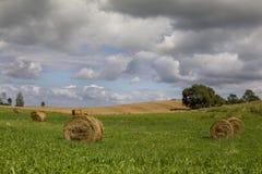 大包干草在国家支持与黑暗的夏天天空 免版税库存照片
