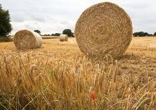 大包干草来回wheatfield 免版税库存照片