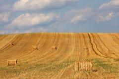 大包干草正方形 图库摄影