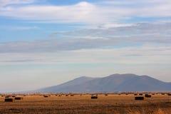 大包领域干草横向正方形 免版税库存照片
