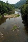 大南叉子国家obed公园的河 库存照片