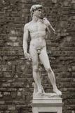 大卫米开朗基罗的雕塑  免版税图库摄影
