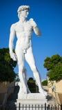 大卫,被弄脏的背景雕象  库存照片