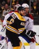 大卫Krejci,波士顿熊 免版税图库摄影