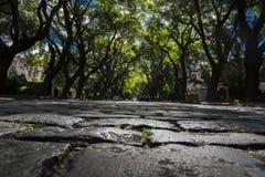 大卵石布宜诺斯艾利斯 库存图片