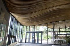 大厅天花板波浪木设计 免版税库存图片
