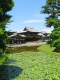 大厅日本菲尼斯包围的水 库存照片
