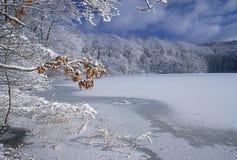 大厅湖冬天 免版税图库摄影