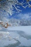 大厅湖冬天 免版税库存图片