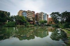 大厦和一个池塘国立台湾大学的,在台北, T 免版税图库摄影