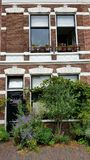 大厦在哈莱姆荷兰 免版税库存照片