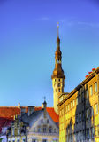 大厦在塔林的历史的中心 库存照片
