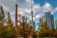 大厦在有加拿大国家电视塔和秋天植被的-多伦多,安大略,加拿大街市多伦多 免版税库存图片