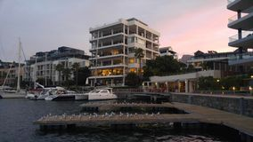 大厦在港口 免版税库存图片