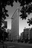 大厦城市flatiron纽约 免版税图库摄影
