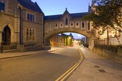 大厦基督有历史教会的dublinia 免版税库存照片