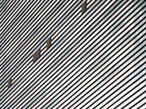 大厦墙壁 免版税库存照片