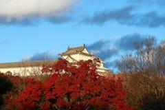 大厦的部分在姬路城的,看从与红色秋天树和蓝天背景的边 免版税库存图片
