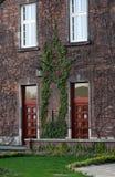 大厦的门面与常春藤的 库存照片