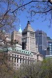 大厦结构树 库存图片