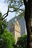 大厦结构树 图库摄影