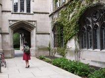 大厦芝加哥哥特式样式大学 库存照片