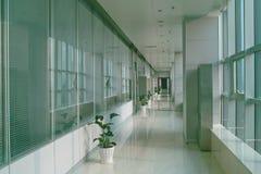 大厦走廊办公室 免版税库存图片