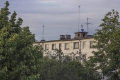 大厦通过结构树 库存照片