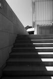 大台阶在市芝加哥 免版税库存图片