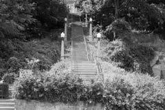 大台阶在方铅矿城市 免版税库存照片