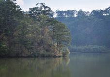 大叻高地风景在越南 免版税库存照片