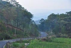 大叻高地风景在越南 免版税图库摄影