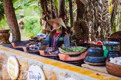 大叻,越南- 2017年2月17日:古芝大叻乡下、旅馆和度假胜地的Lan村庄在杉木密林,在草的阵营中 库存照片