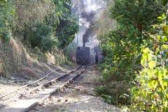 大吉岭喜马拉雅铁路, Dajeerling,印度 免版税库存图片