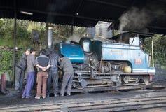 大吉岭喜马拉雅铁路, Dajeerling,印度 库存图片