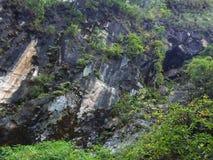 大吉岭岩石山的绿色 免版税库存图片