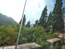 大吉岭岩石山的绿色 免版税库存照片
