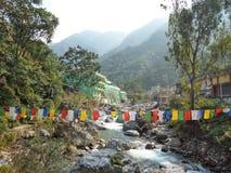 大吉岭岩石山的绿色 免版税图库摄影