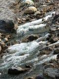 大吉岭岩石河流动 免版税图库摄影