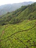 大吉岭,印度, 2011年4月15日:从cabl的鸟瞰图 免版税库存图片