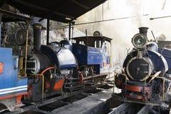 大吉岭,印度, 2017年3月3日:在火车站的蒸汽机车 免版税库存照片