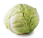 大圆白菜绿色题头蔬菜 图库摄影