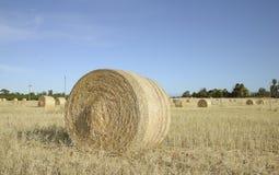 大圆的大包在领域的干草 免版税库存图片