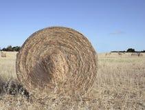 大圆的大包干草 免版税库存图片